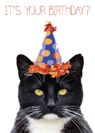 Send A Cats Birthday Card With Your Own Handwriting Signed Sealed Delivered At